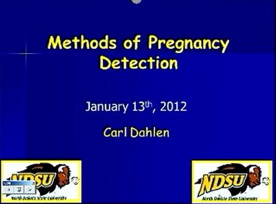 Pregnancy Detection