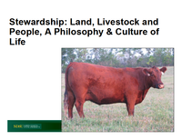 Stewardship - Title Slide