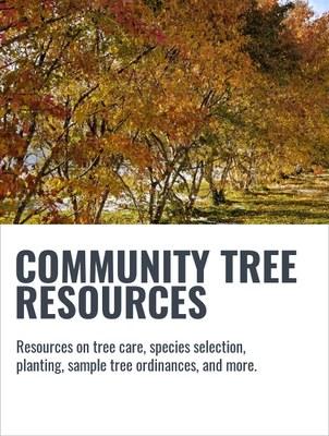 COMMUNITY TREE RESOURCES