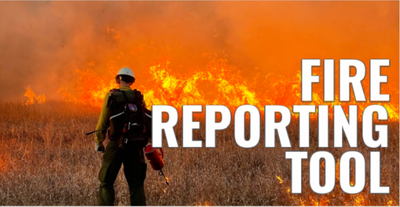 FIRE REPORTING TOOL