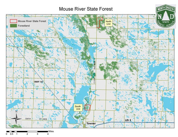 mouse river state forest