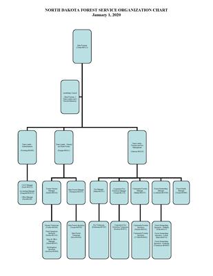 NDFS Org Chart 1 1 20