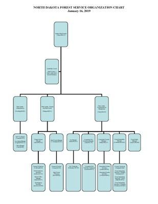 NDFS Org Chart 1-16-19