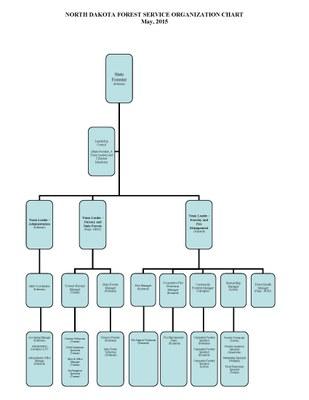 NDFS Organizational Chart   5 1 15