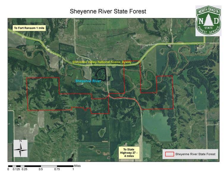 sheyenne river state forest