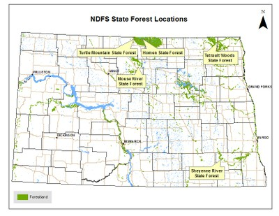 State Forest Locations
