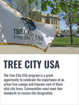 tree city usa graphic (2)