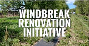 windBREAK RENOVATION INITIATIVE BUTTON SMALL