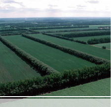 ND Soil Conservation Districts