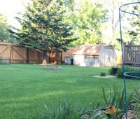 You have several options for mixing up your lawn, depending on your needs. (NDSU photo)