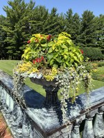 Urns such as this one are placed throughout the Clemens Gardens. (NDSU photo)
