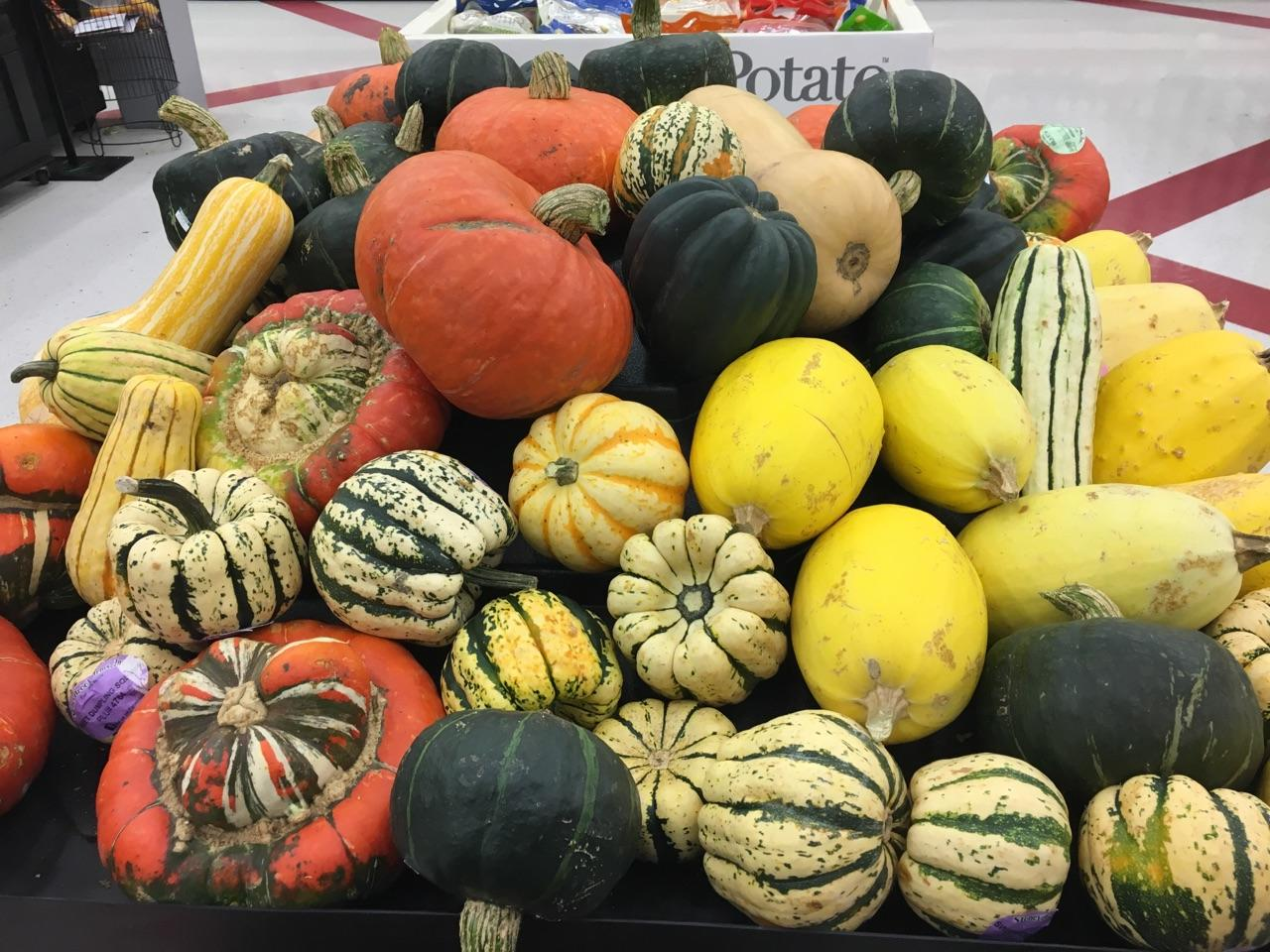 Squash provides health benefits and can be used in a variety of menus. (NDSU photo)
