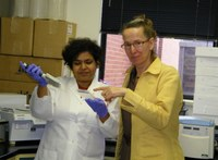NDSU Ph.D. student Preeti Sule, left, and assistant professor Birgit Pruess study an E. coli strain grown on the surface of meat.