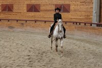 Megan Hansen, a member of NDSU's western equestrian team, competes in open horsemanship.