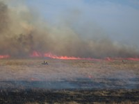 This prescribed burn is in the Theodore Roosevelt National Park in western North Dakota. (Photo courtesy of the National Park Service)