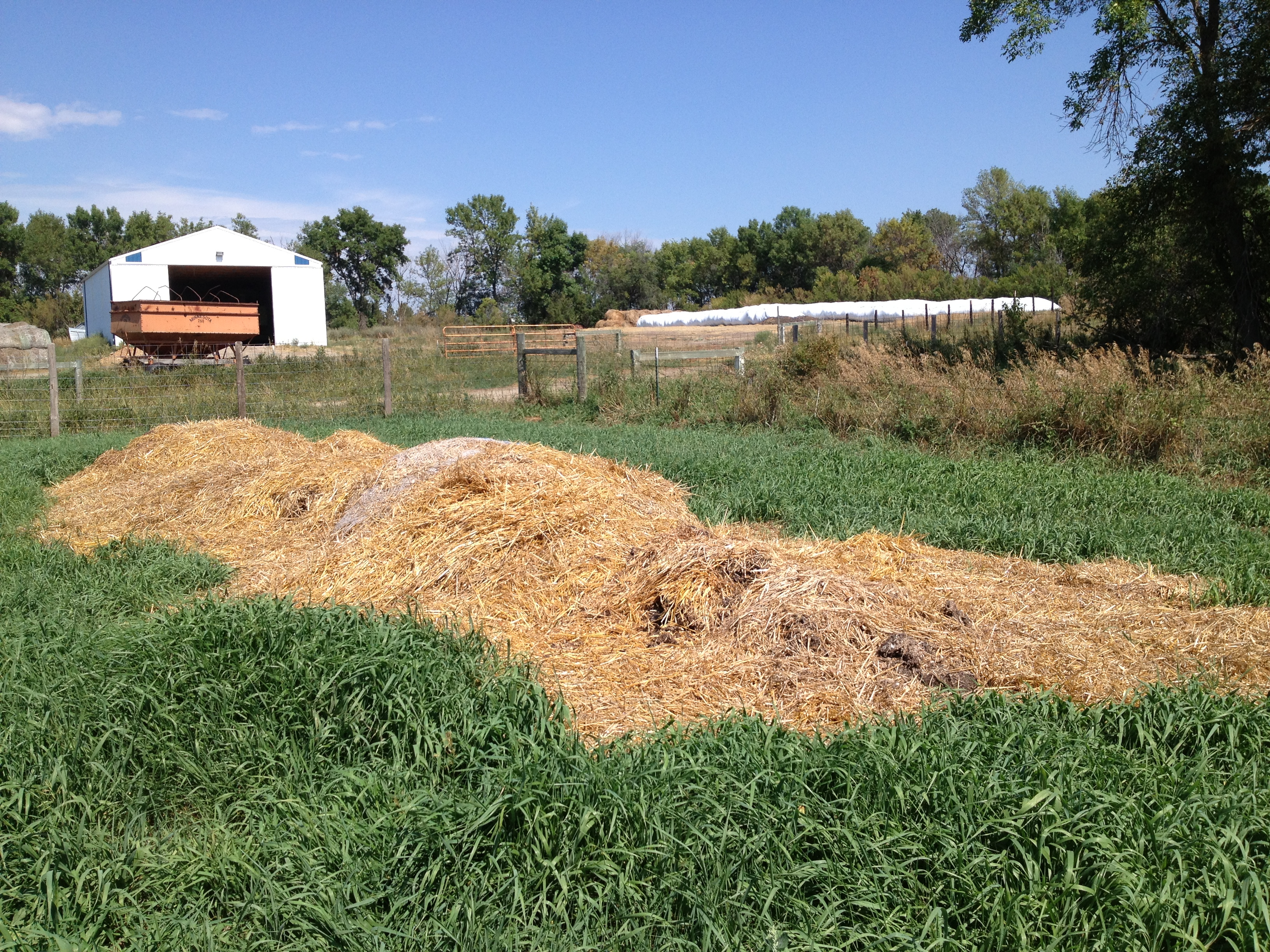 NDSU's Central Grasslands Research Extension Center is using a mortality compost windrow. (NDSU photo)