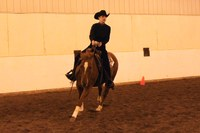 NDSU Western equestrian team member Janna Rice is named reserve high-point rider at two competitions this fall.