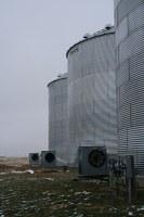 grain drying.jpg