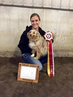 Nicole Anderson, a freshman from Fergus Falls, Minn., won the high-point rider title for the region at competition in Fargo in February and will advance to national competition in May. (NDSU photo)