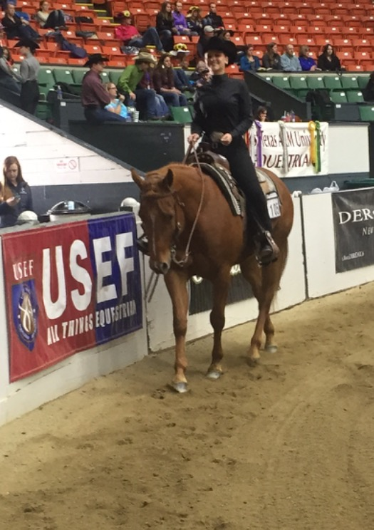NDSU equestrian team member Nicole Anderson competes in the Intercollegiate Horse Show Association's National Horse Show in West Springfield, Mass.