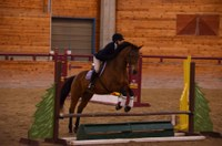 NDSU hunt seat rider Kayla Young competes in the open over fences class. (NDSU photo)