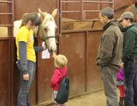 A child meets one of the horses at NDSU's Equine Center during the 2015 Moos, Ewes and More! program. (NDSU photo)
