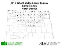 2016 Wheat Midge Larval Survey - Sample Sites - North Dakota