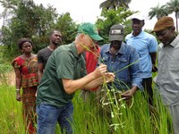 NDSU Extension agronomist Hans Kandel, talks with farmers about rice production in Sierra Leone.