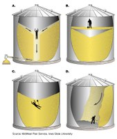 Grain Bin Dangers A. Never enter a storage bin while unloading grain because flowing grain can pull you in and bury you within seconds; B. Grain kernels may stick together, forming a crust or bridge that isn't strong enough to support a person's weight after the grain below it is removed; C. Don't try to break a grain bridge or blockage loose from inside the bin; D. Try to break up a vertical wall of grain from the top of the bin, not the bottom, because the grain can collapse and bury you. (Graphics courtesy of MidWest Plan Service, Iowa State University)