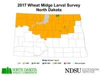2017 Wheat Midge Larval Survey, North Dakota