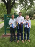 The Ward County team takes first place in the intermediate division of the State 4-H Meat Judging Contest. Team members are (from left): Wyatt Kersten, Mason Kraft and Mark Schauer. (NDSU photo)