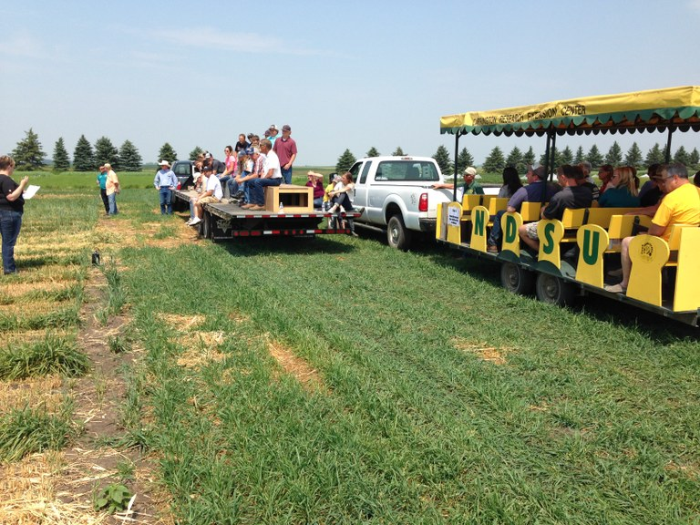 Visitors view crop research during a field day at the Carrington Research Extension Center. (NDSU photo)