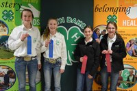 Teams from Ward and Ramsey Counties took first and second place, respectively, in junior division demonstration and illustrated talks. Pictured are (from left): Anne Schauer and Macey Moore, Ward County; Bailey Hawn and Rachelle Jacobson, Ramsey County.