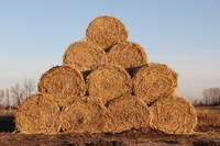 The FeedList can help connect producers that are looking for hay and other feedstuffs to those with ample supply. (NDSU Photo)