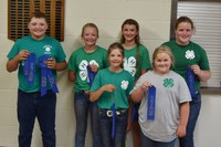Placing first in the junior division of the state 4-H land judging contest was the team from Foster County. Team members (from L to R) are: Kyle Johnson, Brekka Kuss, Cyrena Kuss, London Davis, Cally Hansen and Molly Hansen.