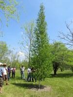 Visitors tour the NDSU Horticulture Research Farm near Absaraka. (NDSU photo)
