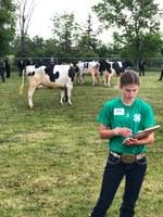 Morton County 4-H'er Jada Bonogofsky makes notes while judging at the North Dakota State 4-H Dairy Judging Contest. (NDSU photo)