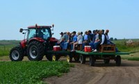 Participants touring the NDSU Irrigated Nesson Research and Development Farm will see the latest WREC research and information on variety trials conducted under irrigation. (NDSU Photo)