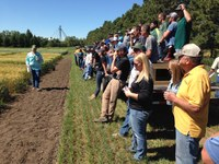 Andrew Green, NDSU spring wheat breeder, speaks to visitors at the Carrington Research Extension Center. (NDSU photo)
