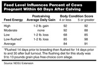 Feed Level Influences Percent of Cows Pregnant Within 60 Days After Calving