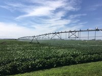 This year's field day at NDSU's Oakes Irrigation Research Site - Robert Titus Research Farm will be held virtually. (NDSU photo)