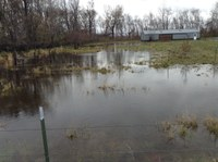 Floodwaters are threatening this Barnes County farm structure. (NDSU photo)