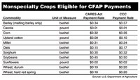 Nonspecialty Crops Eligible for CFAP Payments