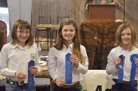 The Grand Forks County 4-H team took first place in the intermediate division of the Winter Show hippology contest. Pictured are, from left: Faith Krebs, Brooklyn Steen and Hannah Steen. (NDSU photo)