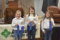 The Pierce County 4-H team took first place in the junior division of the Winter Show hippology contest. Pictured are, from left: Addi Mack, Elizabeth Hurly and Morgan Scherr. (NDSU photo)
