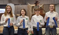 The Ward County 4-H team took first place in the senior division of the Winter Show hippology contest. Pictured are, from left: Olivia Lebrun, Emily Fannik, Mikaela Woodruff and Anne Schauer. (NDSU photo)