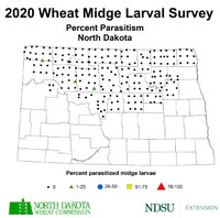 2020 Wheat Midge Percent Parasitism Map (NDSU Photo)