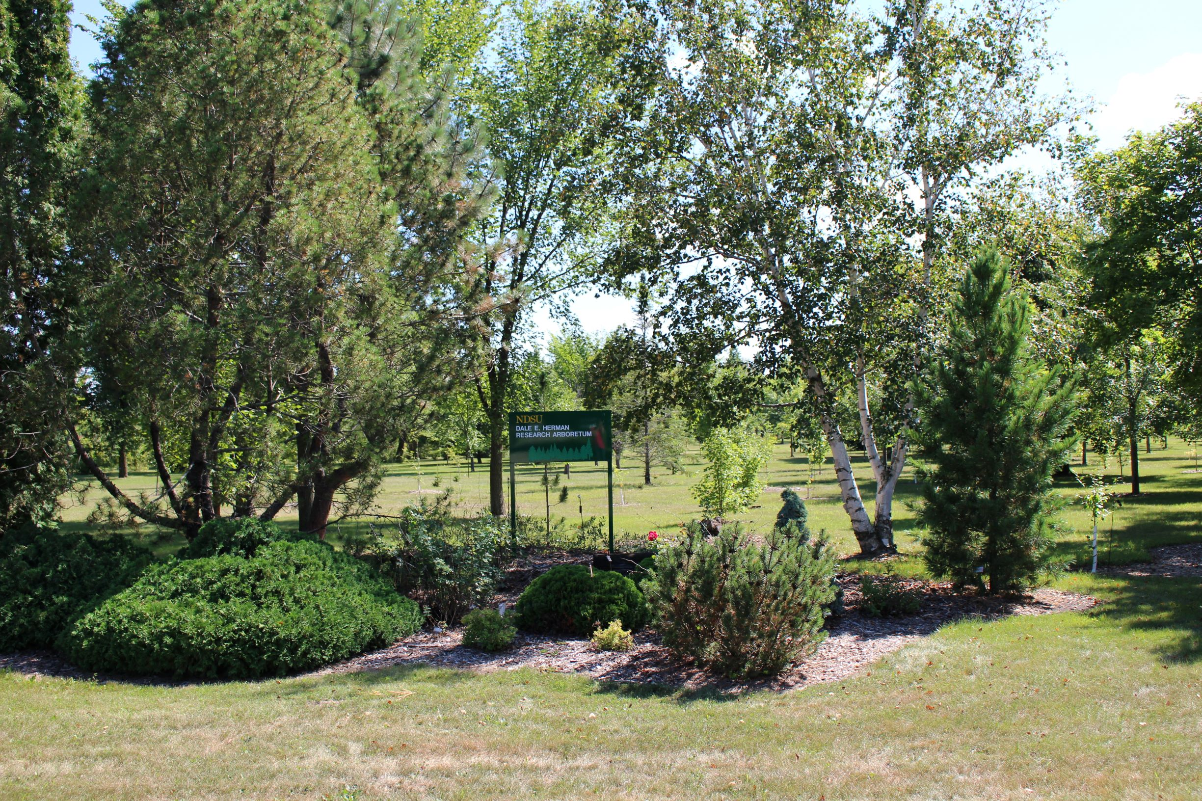 The Dale E. Herman Research Arboretum is part of the NDSU Horticulture Research Farm near Absaraka, N.D. (NDSU photo)