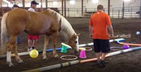 Students participate in an equine-assisted learning session at the NDSU Equine Center. (NDSU photo)
