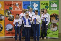 The Pierce County team takes first place in the junior division of the state horse judging contest. Pictured are, from left, front row: Morgan Scherr, Addi Mack and Elizabeth Hurly; back row: Jesse Wolf, Maggie Iverson and Kami Guty, (NDSU photo)